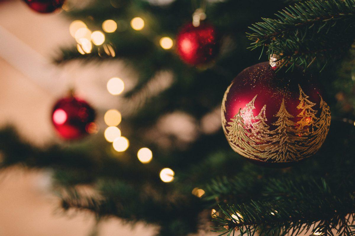 ispirazioni di natale fasoli piante 5 stili e temi natalizi