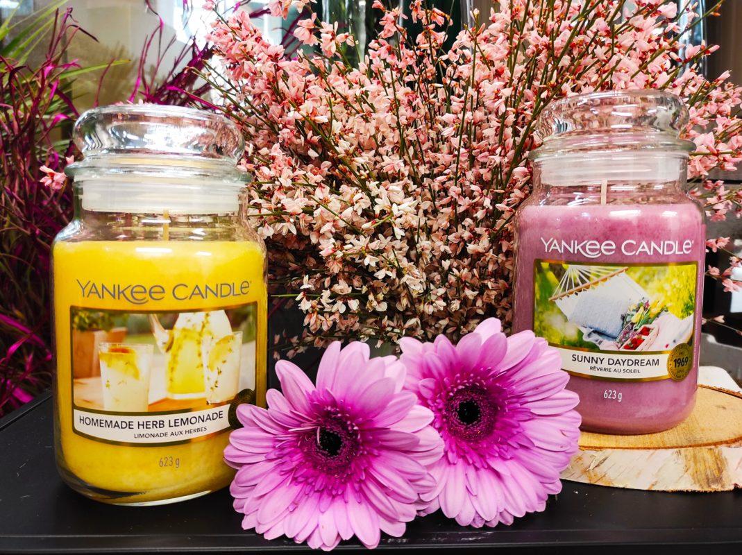 le yankee candle in offerta a marzo da fasoli piante