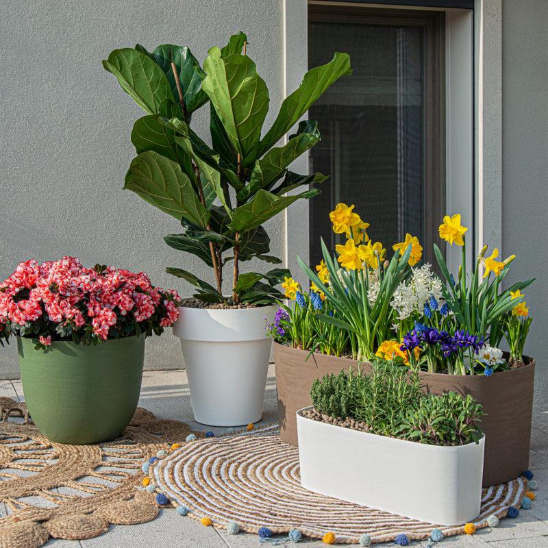 vasi tera vasi riciclati e riciclabili in promo da fasoli piante